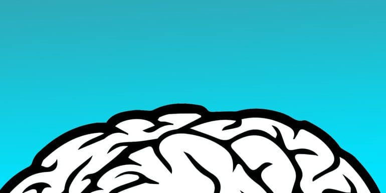 ba-brain2