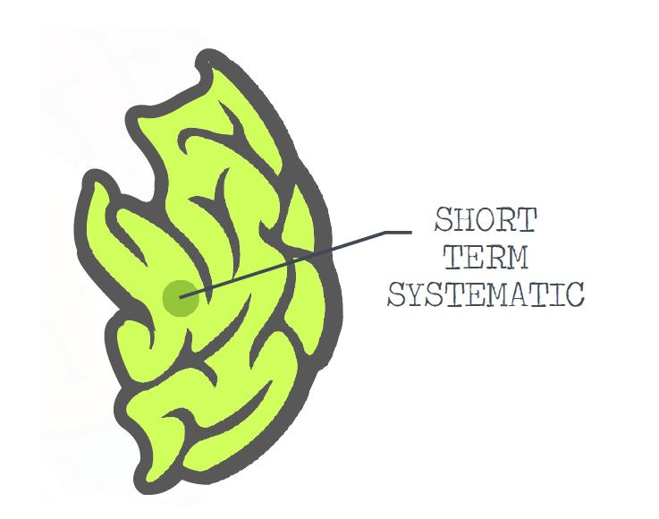 short-term-brain