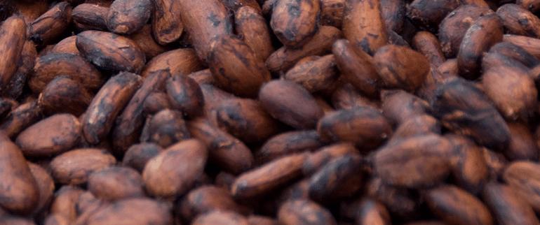 cocoa_banner